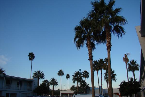 Notre hotel, bien placé,trés années 50, mais un rapport qualité prix pas extra, cher pour la prestation... On s'apercevra plus tard que c'est le début de deux semaines de folies à Tucson: la foire aux gems
