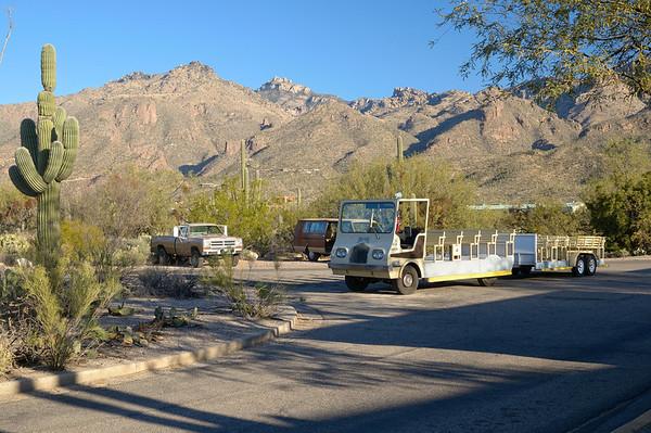 """Hier, le conseil du visitor center, c'était n'oubliez pas la pince à épiler à cause des cactus, Aujourd'hui le conducteur de la navette nous dit en partant: """"don't feed rattlesnakes!!!"""" C'est rassurant...En plus un Puma a été vu sur la route il y a quelques jours!!"""