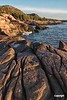 AcadiaCoast_D718182
