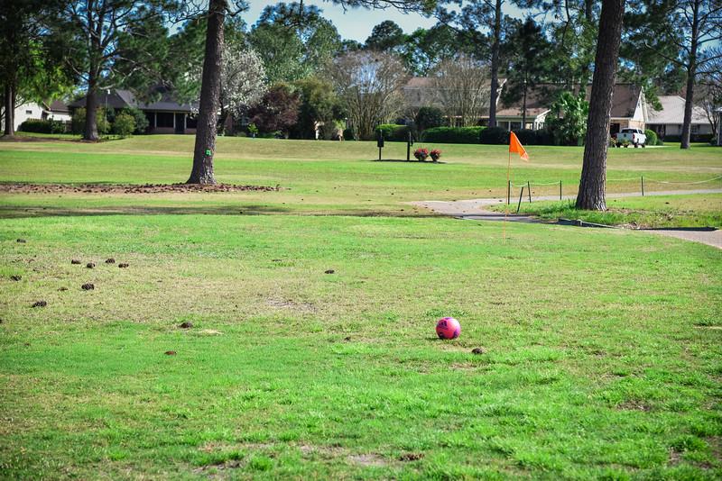 glenlakes golf club footgolf