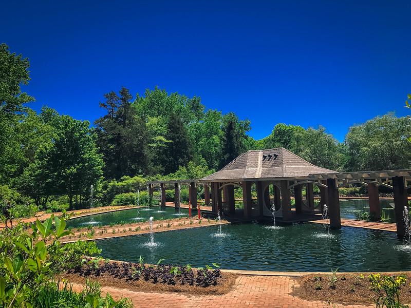 damson aquatic garden huntsville