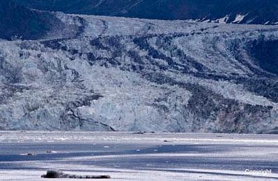 Glacier_0228