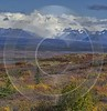 Denali Hwy Cantwell Viewpoint Alaska Panoramic Landscape Photography Fine Art Photography Outlook - 020508 - 09-09-2016 - 7744x8021 Pixel