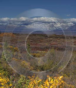 Denali Hwy Cantwell Viewpoint Alaska Panoramic Landscape Photography Spring Country Road Forest - 020465 - 09-09-2016 - 7817x9076 Pixel