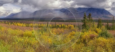 Cantwell George Parks Hwy Viewpoint Alaska Panoramic Landscape Fine Art Fotografie Spring Island - 020232 - 06-09-2016 - 16849x7645 Pixel