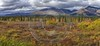 Cantwell George Parks Hwy Viewpoint Alaska Panoramic Landscape Shore Fine Arts Photography Leave - 020233 - 06-09-2016 - 16772x7676 Pixel