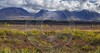 Cantwell George Parks Hwy Viewpoint Alaska Panoramic Landscape Shore Sunshine Outlook - 020342 - 06-09-2016 - 13905x7391 Pixel