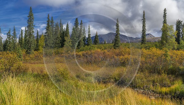 Cantwell Hurrican Gulch Bridge Viewpoint Alaska Panoramic Landscape Art Prints For Sale View Point - 020328 - 06-09-2016 - 13550x7728 Pixel