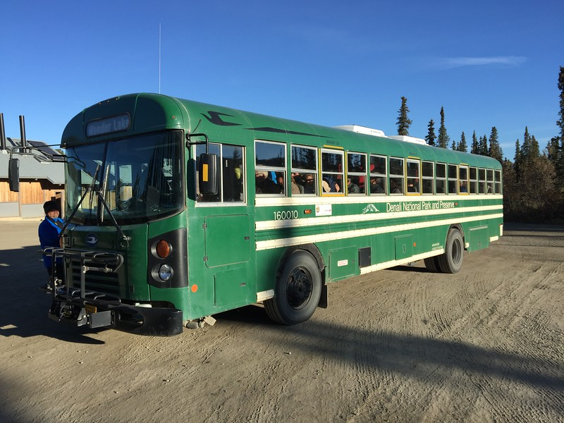 denali national park tour bus