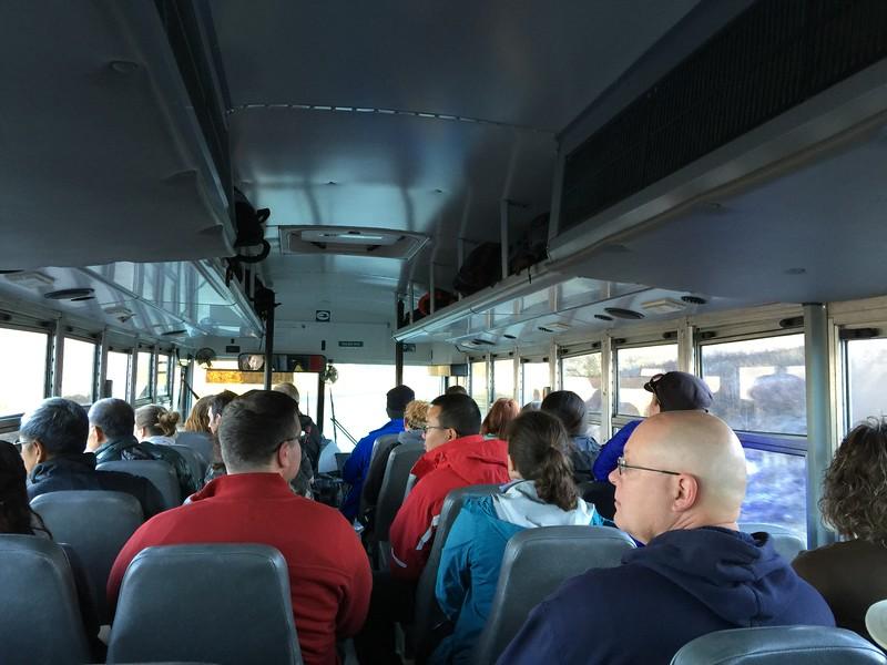 denali shuttle bus tours