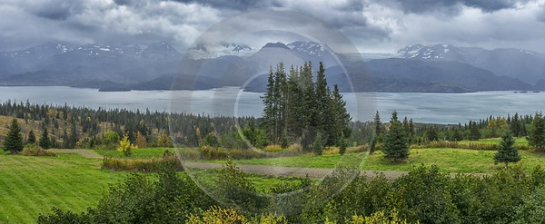 Homer Kachemak Bay Alaska Panoramic Landscape Photography Glacier Tree Fine Art Nature Photography - 020367 - 20-09-2016 - 15512x6374 Pixel