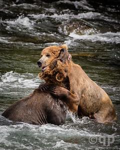 BEAR EMBRACE