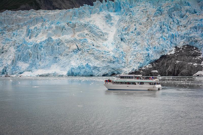 aialik glacier major marine tours