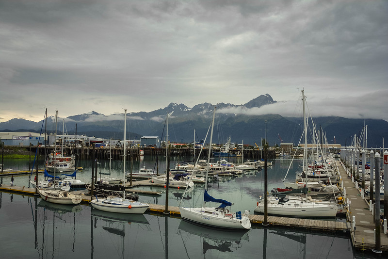 major marine tours seward