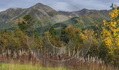 Portage Seaward Hwy Alaska Panoramic Landscape Photography Tundra Art Prints For Sale River - 020334 - 19-09-2016 - 13234x7825 Pixel