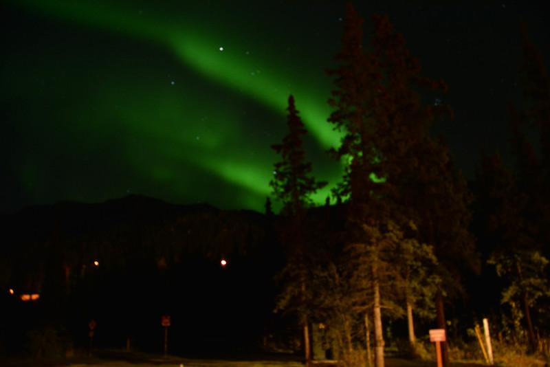 northern lights denali national park