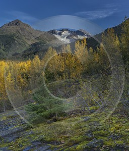 Exit Glacier Seaward Alaska Panoramic Landscape Photography Tundra Fine Art Prints For Sale Island - 020488 - 19-09-2016 - 7594x8889 Pixel