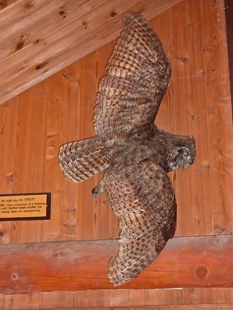 Eagle River Nature Park