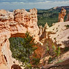 The Natural Bridge at Bryce Canyon. It's not a bridge of course, more correctly it is an Arch. The speculation is that this structure had two other arches attached to it. You can see the likely middle column to the right of the remaining arch.