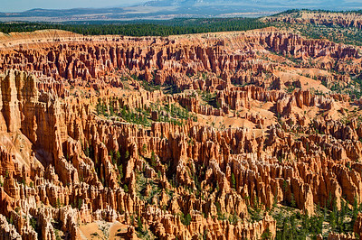 "Bryce Canyon, famous for its worldly unique geology, consists of a series of horseshoe-shaped amphitheaters carved from the eastern edge of the Paunsaugunt Plateau. The erosional force of frost-wedging and the dissolving power of rainwater have shaped the colorful limestone rock of the Claron Formation into bizarre shapes, including slot canyons, windows, fins, and spires called ""hoodoos""."