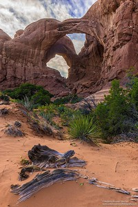 El doble arco / The double arch