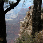 Long Way Down – North Rim, Grand Canyon National Park, Arizona – Daily Photo