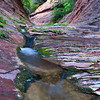 Vibrant colors of Oak Creek Canyon in August.