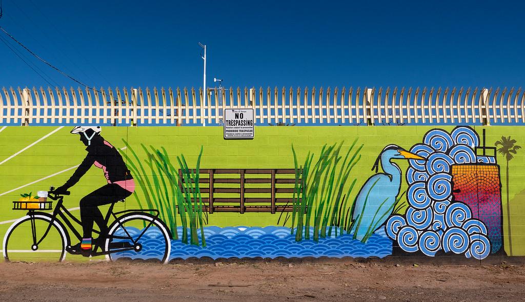 Things to do in Tempe AZ: Street art in Tempe AZ