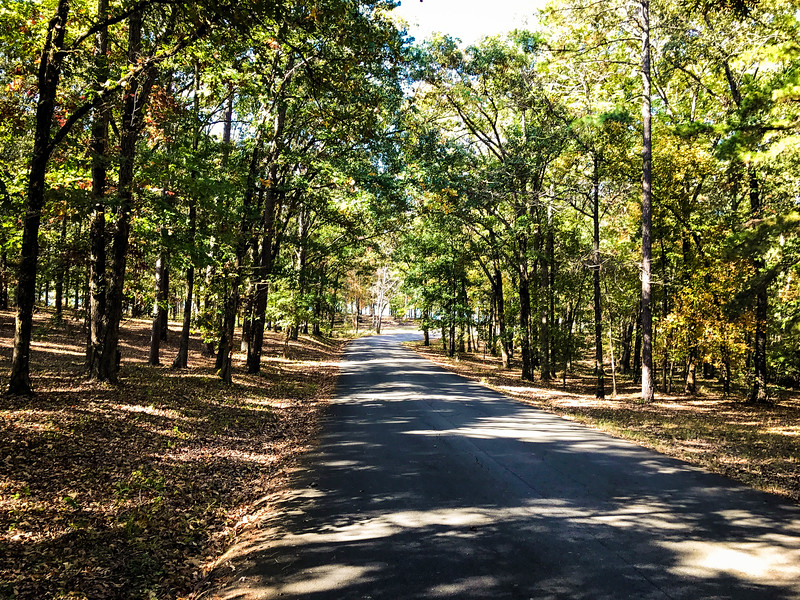 craighead forest park loop
