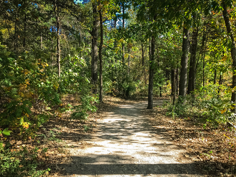 craighead forest park trails