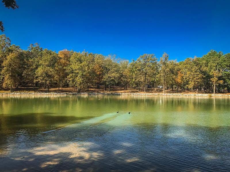 craighead forest park jonesboro arkansas