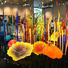 Chihuly at Clinton Presidential Library