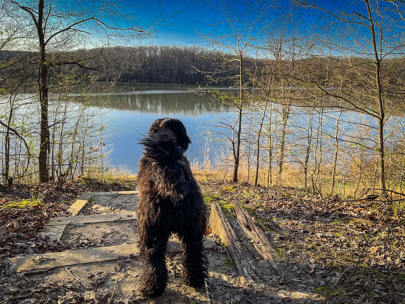 village creek state park hiking trails