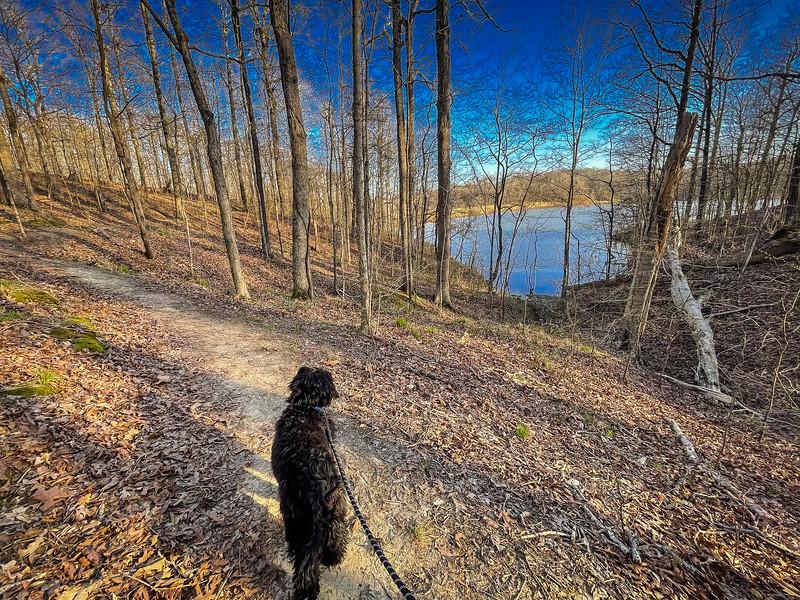 lake austell hiking trail