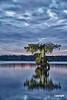 LakeMartinAfterSunset_DSC4779