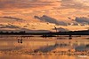 Sunsetfromflyingdeck_1550