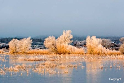 Sunrise_pond_0211