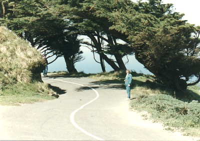 Point Reyes - 6
