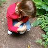 Banana slug | Boy Scout Tree Trail