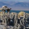 Sand tufa, Mono Lake