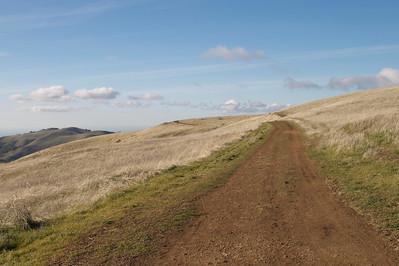 Hiking Russian Ridge Open Space Preserve
