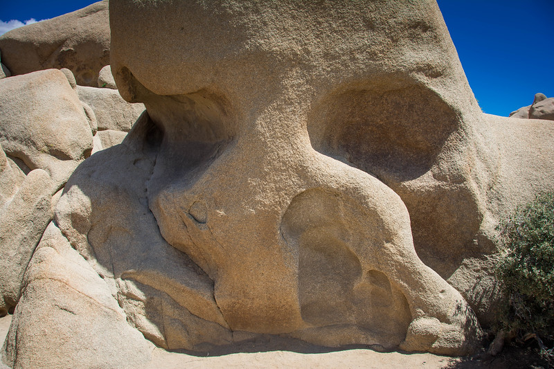 skull rock joshua tree