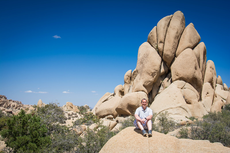 joshua tree national park best hikes