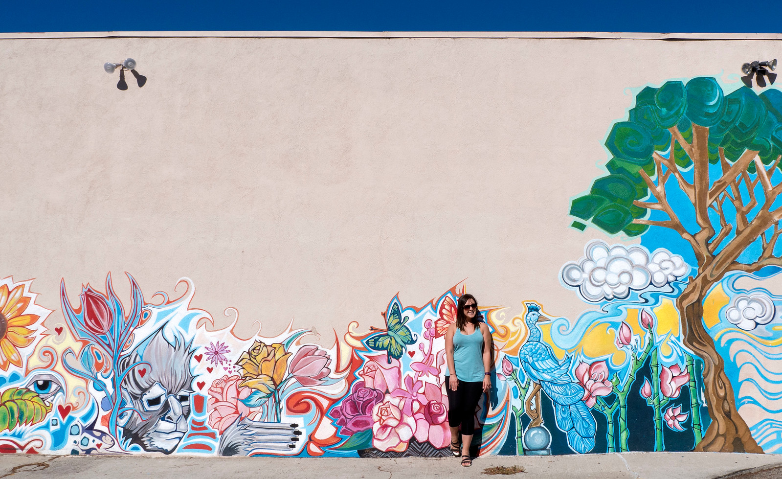 Venice street art - 2 Days in Los Angeles Itinerary for First Timers