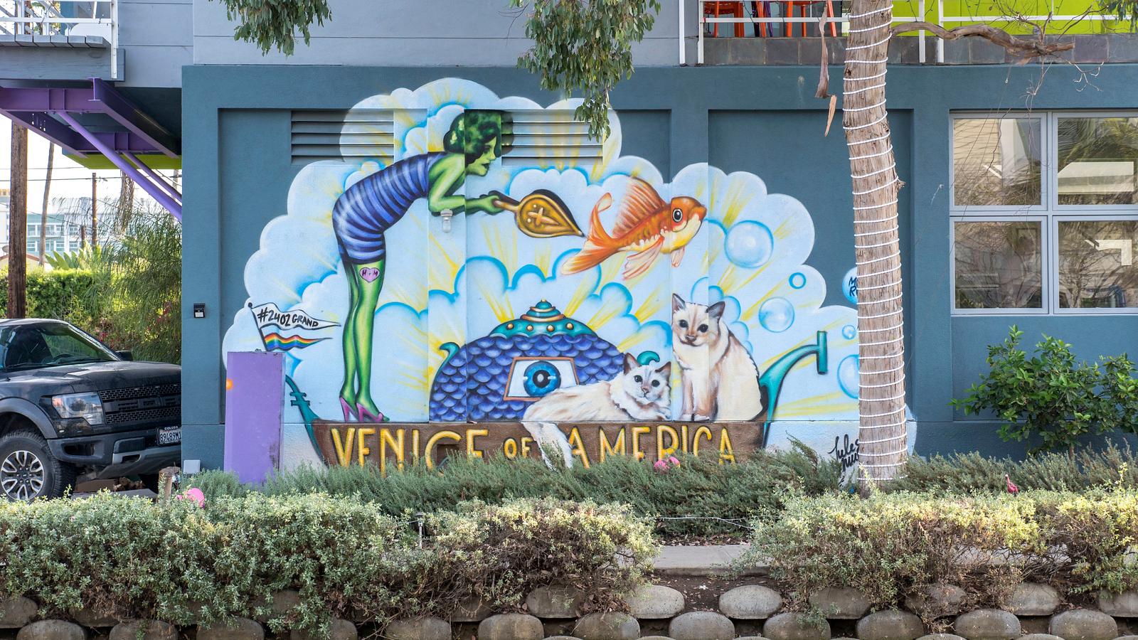 Street art of Venice - Venice of America