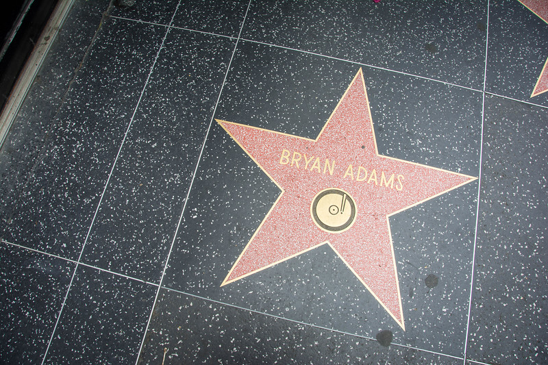 walk of fame stars in hollywood
