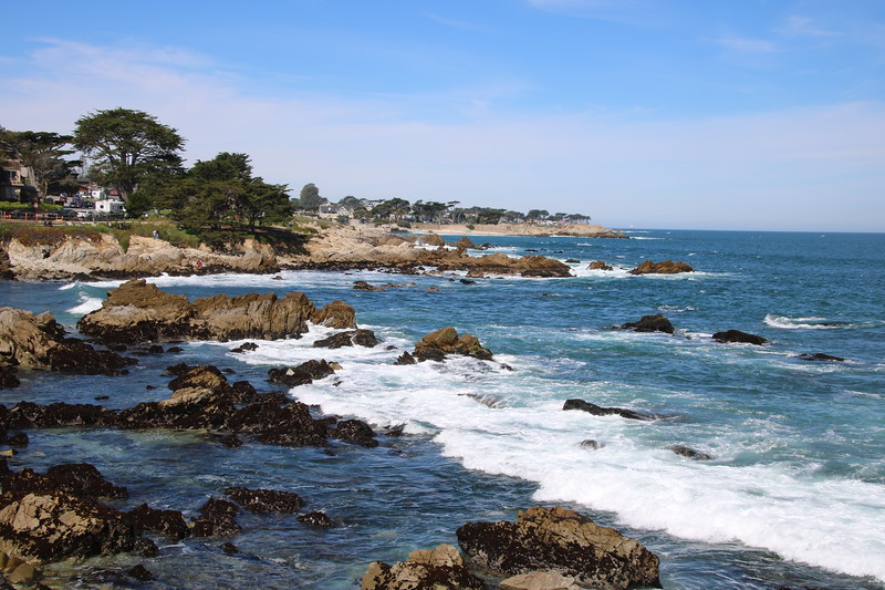 Pacific Grove Coast in front of Martine Inn