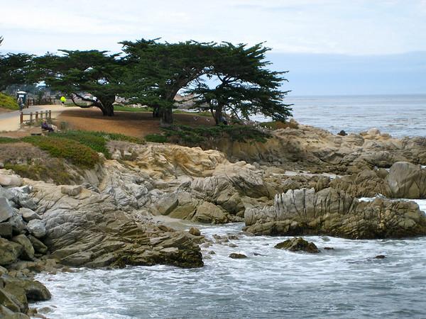 Monterey / Pacifc Grove coast