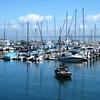 Boats near Monterey Wharf