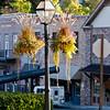 Nevada City Flower Baskets